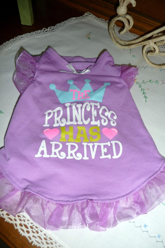 The Diva's new party dress!!